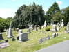 Cemetery: Hillside Cemetary, Scotch Plains, NJ : A place to rest with history, family and trees.  A wonderful place to visit